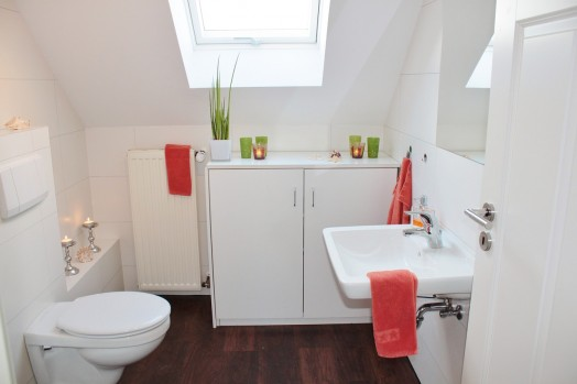 Toilet plumbing problems Essex